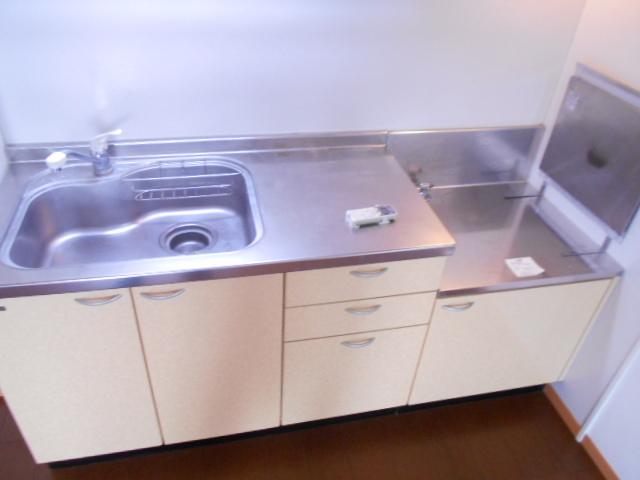 グリーンアヴェニューF 202号室のキッチン