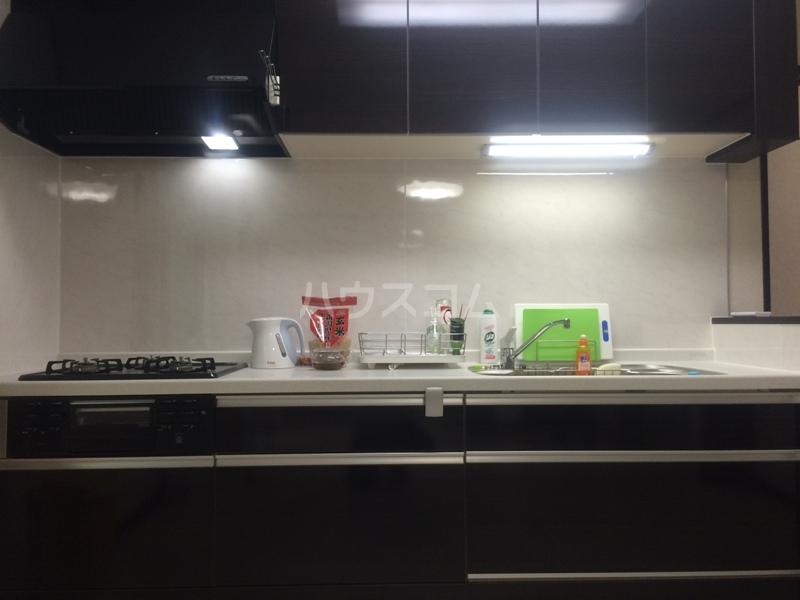 もみの気ハウス 204号室のキッチン