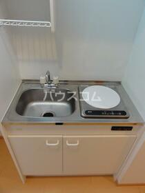 ビラ・リバーサイド多摩川 203号室のキッチン