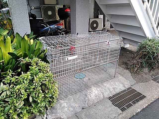 鈴木アパート 2F号室の設備