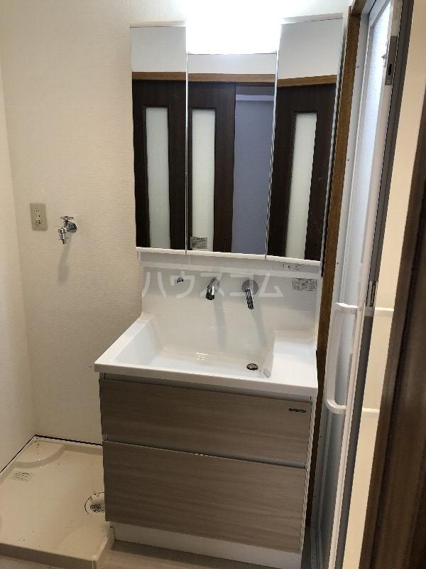コートヴィレッジ久米 201号室の洗面所
