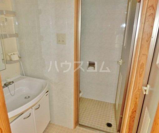 シティービューハウス 205号室の洗面所