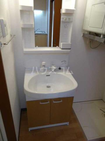 メゾンコート リバティー 402号室の洗面所
