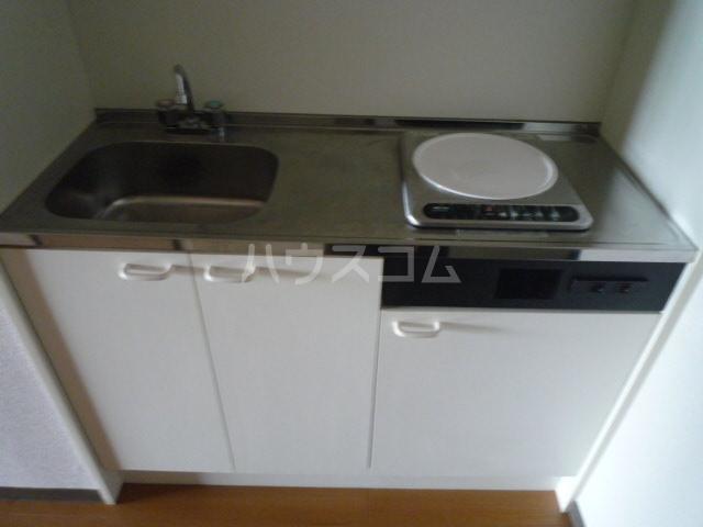 ジュネスケンイチ 201号室のキッチン
