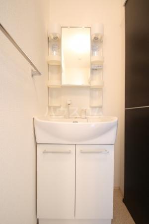 リヴェール21 202号室の洗面所