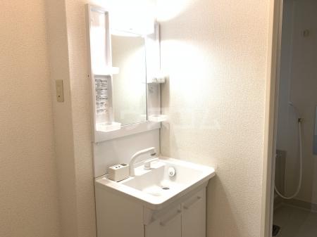 エスポワール宇美 102号室の洗面所