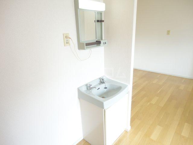 奥田ハイツ 201号室の洗面所