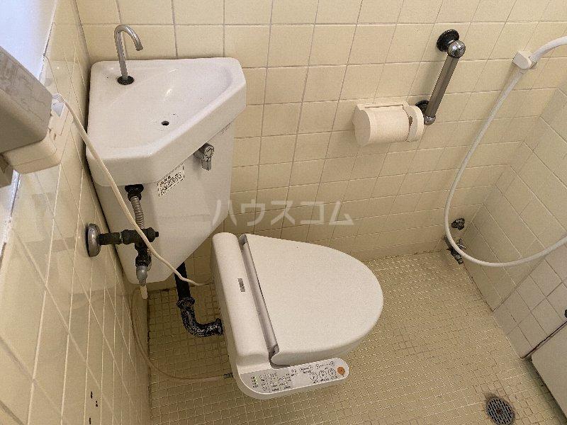 池上ハイツ 203号室のトイレ