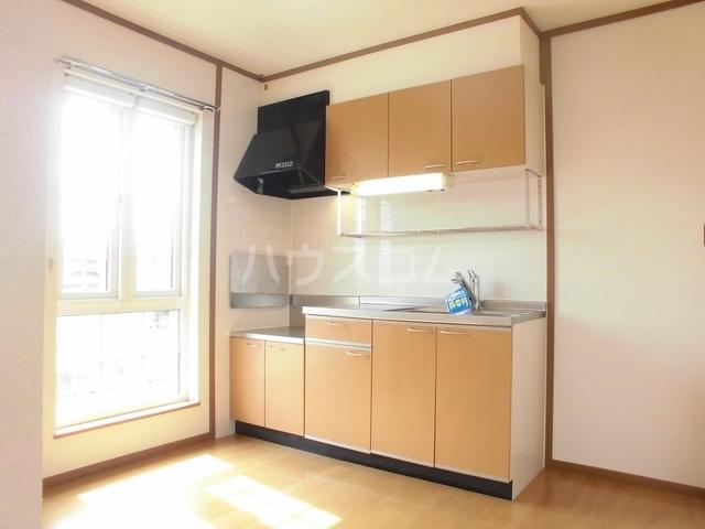 ニューヒルズ毛野B 02020号室のキッチン