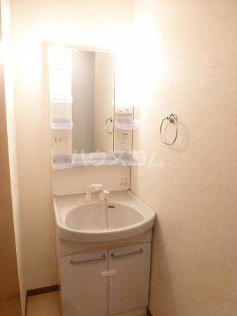 ヴィラージュ・ガーデンA 103号室の洗面所