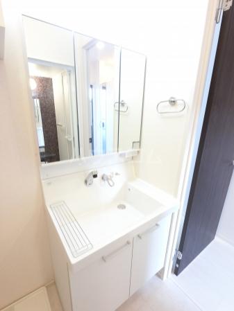 Grant・Ⅰ 105号室の洗面所