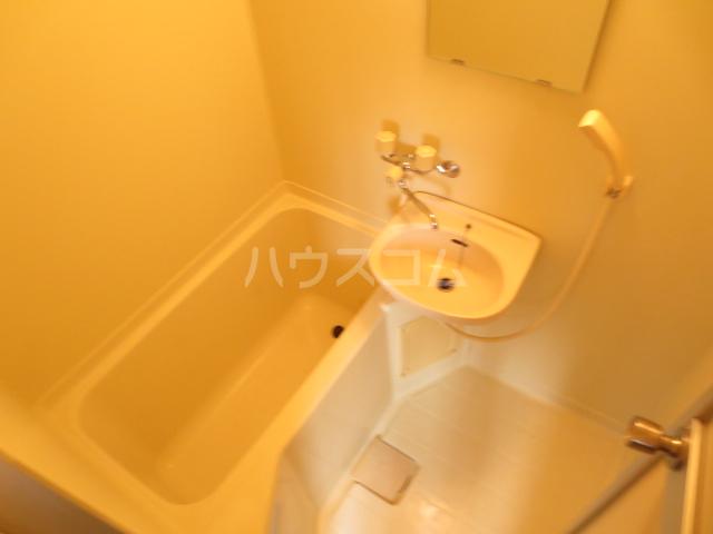 パストラルハウスD棟 101号室の洗面所