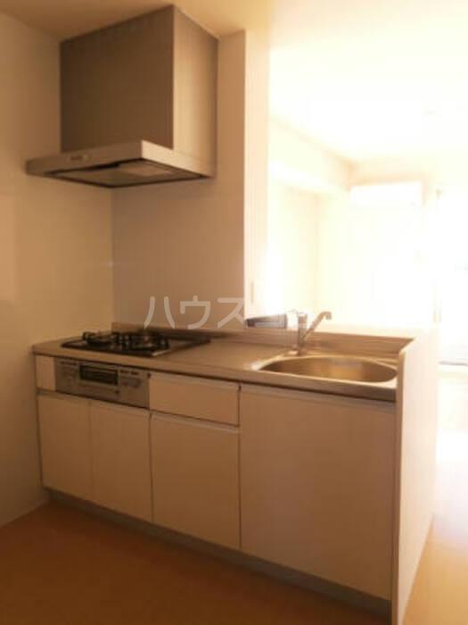 フルール・ド・ティアラE 206号室のキッチン