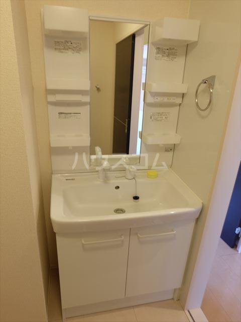 フルール・ド・ティアラE 206号室の洗面所