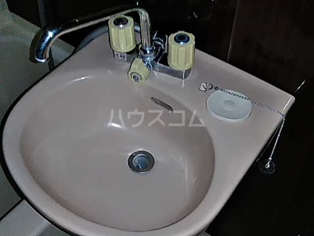 テクトピア秦野 305号室の洗面所