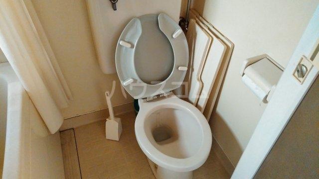 ブルーアップル 202号室のトイレ
