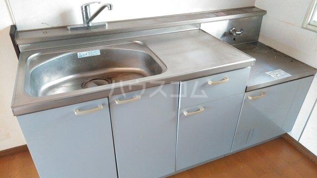 ブルーアップル 202号室のキッチン