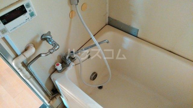 ブルーアップル 202号室の風呂