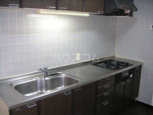 ラ・ポール七番館 206号室のキッチン