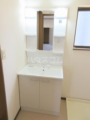 リーヴァスペランツァD 2号室の洗面所