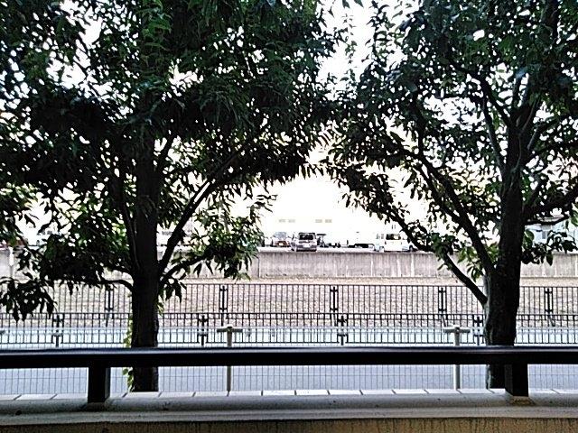 エクセレンス茨木 102号室の景色