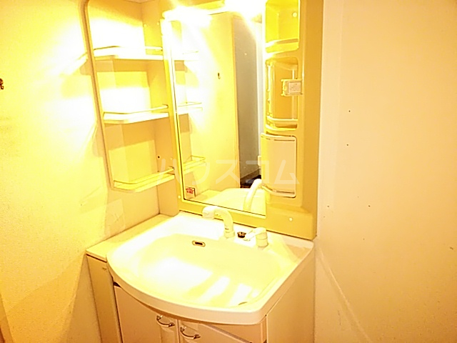 グランドール山口 105号室の洗面所
