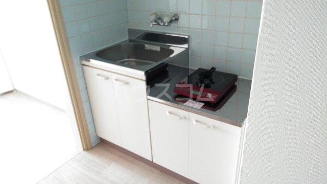 レオパードウエハラ 403号室のキッチン