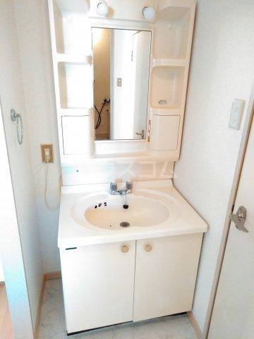 カームコア 106号室の洗面所
