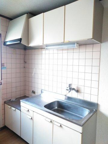 大平グリーンハイツ 101号室のキッチン