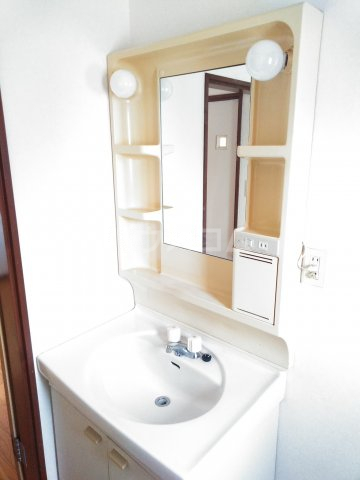 大平グリーンハイツ 101号室の洗面所