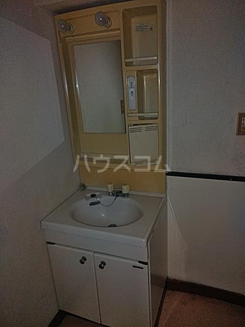 プラムガーデン 211号室の洗面所