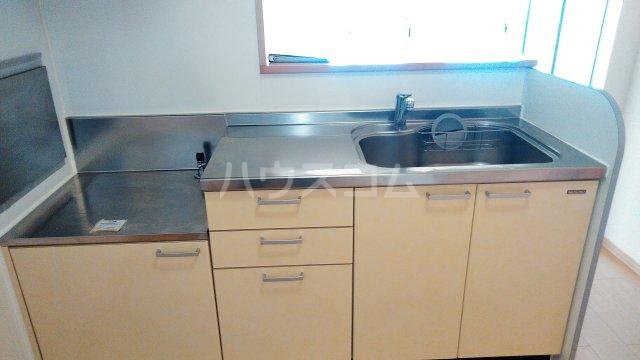 ボナールB 203号室のキッチン