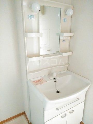 エアリーヒルi C 02020号室の洗面所