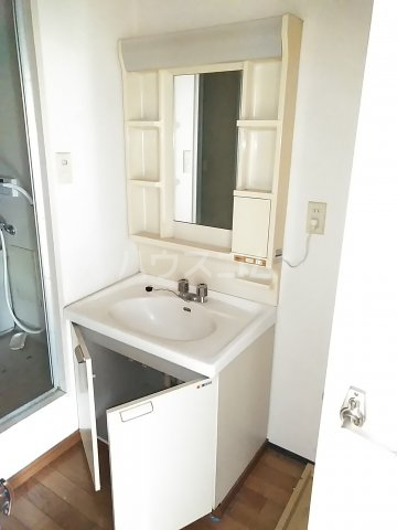 フリーダム A 202号室の洗面所