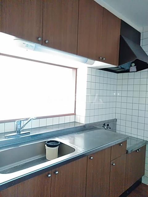 ヴィクトワール 3C号室のキッチン