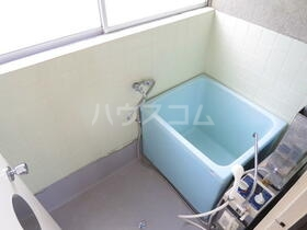 星野荘 2-5号室の風呂