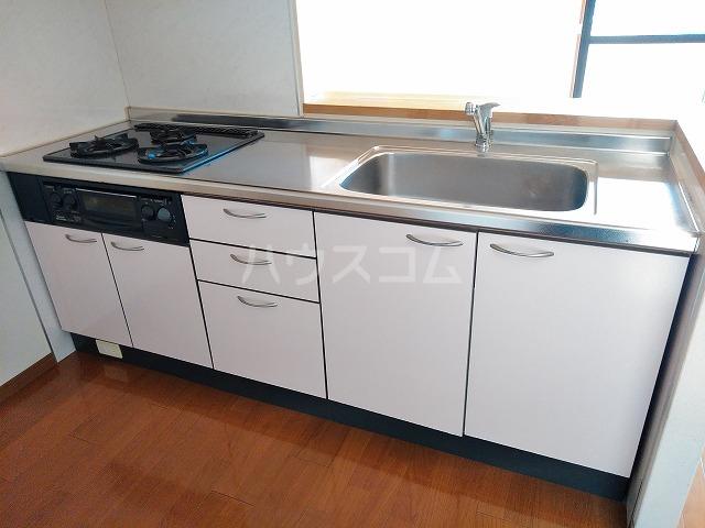 ボナール木太 203号室のキッチン