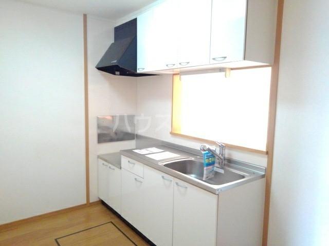 ポニーヒルズ D 01020号室のキッチン