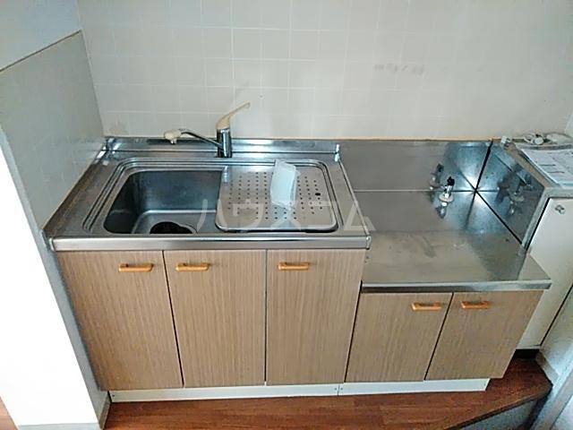 ロイヤルコーポ幸 A 101号室のキッチン