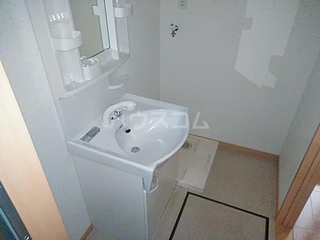 アミティー伊奈 205号室の洗面所