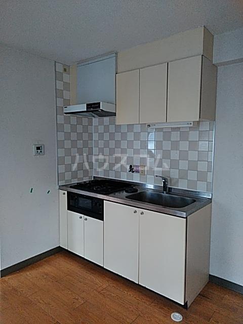 ドリームGビル 203号室のキッチン