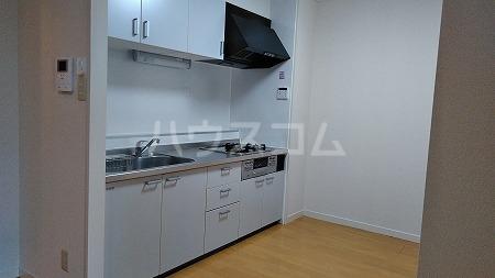プリミエール烏山 303号室のキッチン
