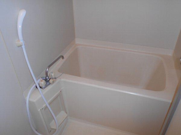 スターライトM 403号室の風呂