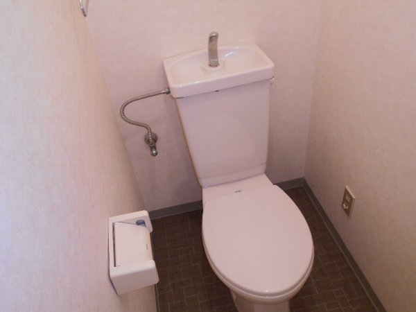 スターライトM 403号室のトイレ