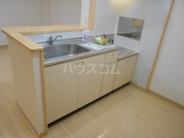 フォレストリバー 203号室のキッチン