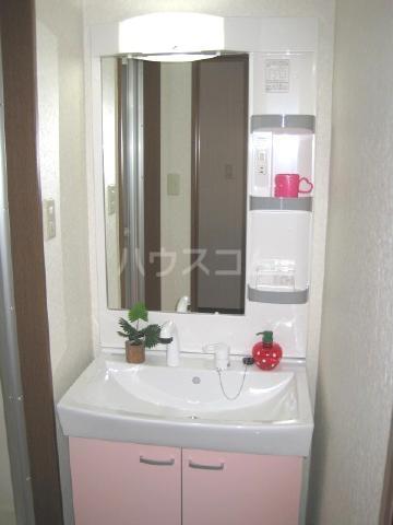 エレンシア・N 30A号室の洗面所