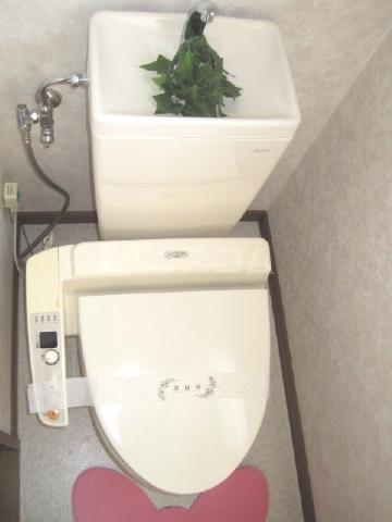 エレンシア・N 30A号室のトイレ