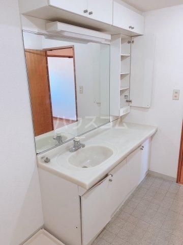 さちが丘ダイカンプラザスポーツメント 201号室の洗面所