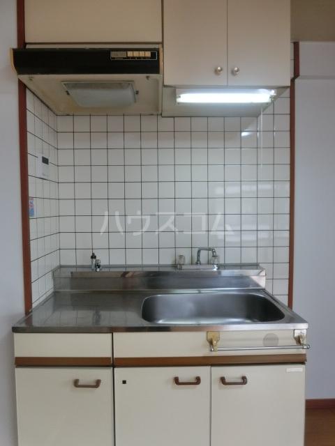 STコーポ 203号室のキッチン