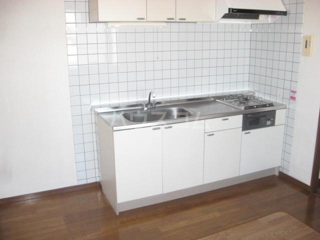 リバーサイド蘭 201号室のキッチン